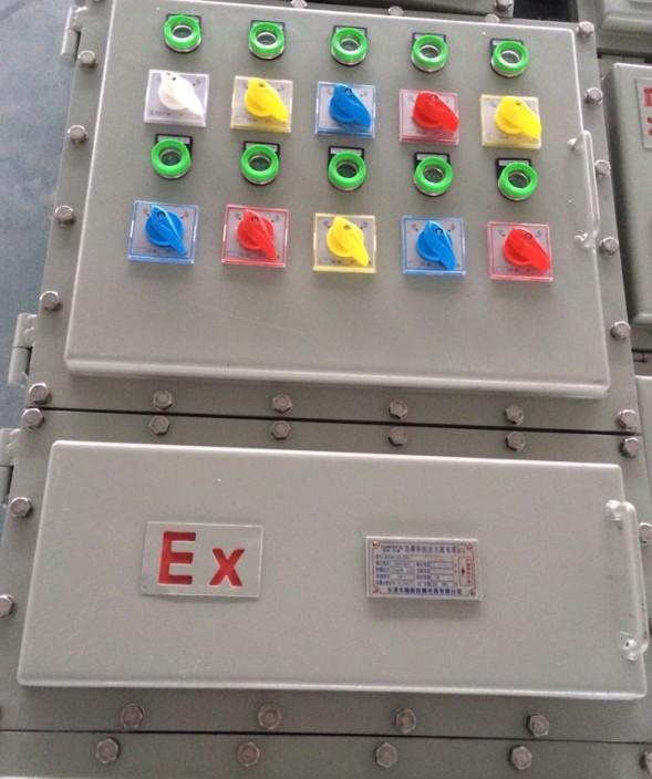 钢板焊接防爆配电柜图片1